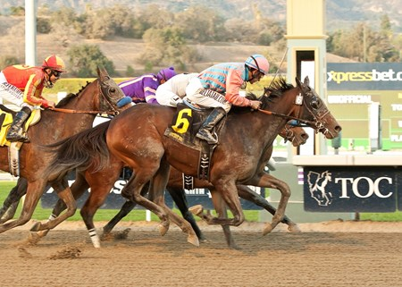 Spellbound made trainer Richard Mandella's quick cross-country trip worthwhile when she came from far out of it to capture the $200,000 La Canada Stakes (gr. II) by a neck at 16-1 odds Jan. 19, 2014 at Santa Anita Park.