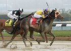 "Saythreehailmary's won the Ladies Handicap on Jan. 10. <br><a target=""blank"" href=""http://photos.bloodhorse.com/AtTheRaces-1/At-the-Races-2016/i-ZB7RhgT"">Order This Photo</a>"