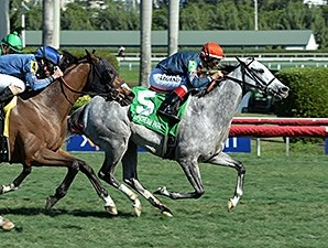 Lori's Store comes running to take the Sunshine Millions Filly and Mare Turf Stakes.