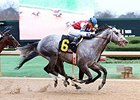 Street Strategy takes the the Fifth Season Stakes at Oaklawn.