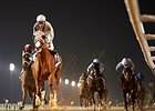 California Chrome rolls to victory in the Trans Gulf Electromechanical Trophy Handicap.