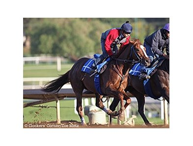 Ziconic worked 4 furlongs from the gate in :49 3/5 at Santa Anita Park Feb. 13.