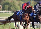 Ziconic Set for Debut at Santa Anita