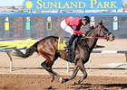 K P Wildcat Shines in Sunland's Racing Return