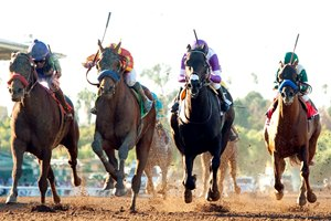 In a tight finish Hoppertunity (2nd from left) gets the victory over Imperative (far left) in the Grade II $500,000 San Antonio Stakes at Santa Anita Park.