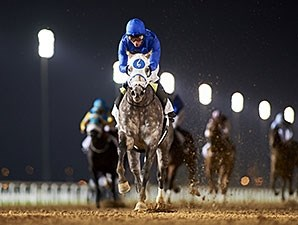 Frosted runs away from the field in the Al Maktoum Challenge Round 2.