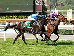 Bolo (left) catches Obviously late to win the Arcadia.
