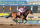 Entries Strong for Sunland Park's Return
