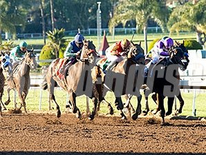 Hoppertunity wins the 2016 San Antonio Stakes.