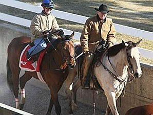 Discreetness works at Oaklawn Park Feb. 10.