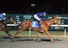 Acapulco returns a winner at Turfway Park.