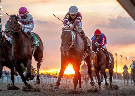 Backstretch talk of Gun Runner being an improving 3-year-old proved true as he opened his 2016 season with a smooth victory in the $400,000 Veterans Ford Risen Star Stakes (gr. II) at Fair Grounds Race Course & Slots.