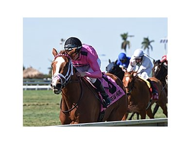Catch a Glimpse leads the way home in the Herecomesthebride Stakes.