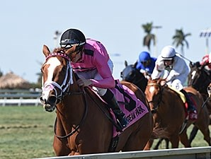 Catch a Glimpse takes her earnings past $765,000 in the grade III Herecomesthebride at Gulfstream Park