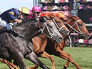 Chautauqua (outside) comes running late to win the Black Caviar Lightning Stakes.
