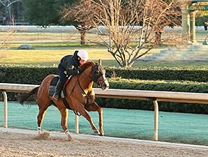 Whitmore works at Oaklawn Park Feb. 8, 2016.