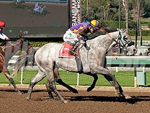 Palos Verdes winner Kobe's Best has been invited to the Dubai for the Golden Shaheen