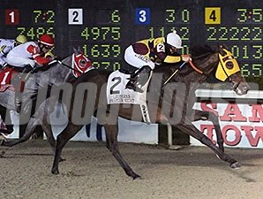Stormdriver wins the LA Bred Premier Night Championship Stakes.