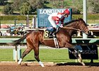 Songbird Untouchable in Las Virgenes