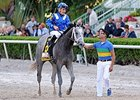 Mohaymen Morning-Line Future Wager Favorite