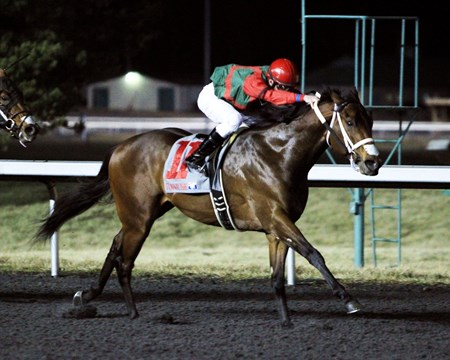 Shogood led from start to finish in the $50,000 WEBN Stakes for 3-year-olds at Turfway Park.