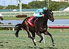 "Tammy the Torpedo rolls to victory in the Suwannee River Stakes.<br><a target=""blank"" href=""http://photos.bloodhorse.com/AtTheRaces-1/At-the-Races-2016/i-kPd7Fjd"">Order This Photo</a>"