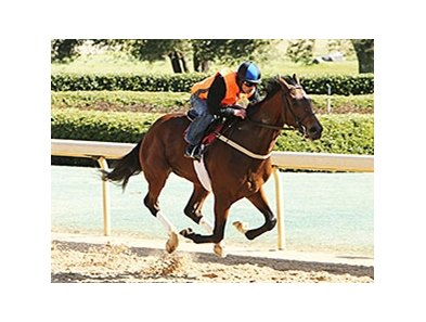 Suddenbreakingnews worked a half-mile in :51 1/5 at Oaklawn Park.