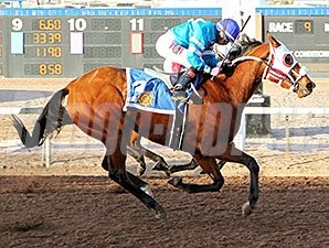 Zasha rallies late to catch her sister Desert Stepper (obscured) in the Peppers Pride Handicap