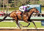 Nyquist Scores in San Vicente, Still Unbeaten