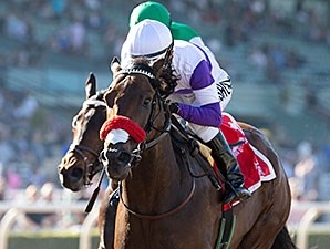 Nyquist wins the San Vicente Stakes.