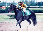 1999 Florida Derby Winner Vicar Dies
