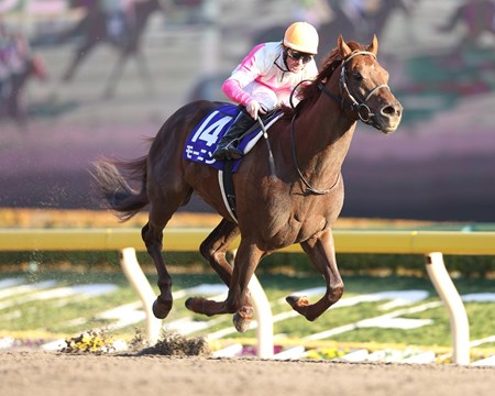 Moanin, a New York-bred son of Henny Hughes, unleashed a quick turn of foot at the top of the stretch and continued his momentum for a 1 1/4-length victory in the February Stakes (Jpn-I) at Tokyo Racecourse.