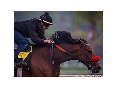 Nyquist worked five furlongs in 1:01 2/5 at Santa Anita on March 18.