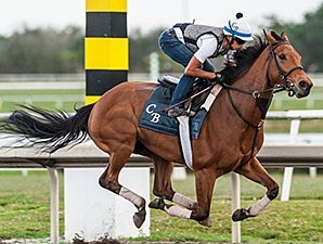 Lady Eli has completed three timed workouts since her Feb. 29 return to training and shows continuous improvement