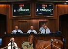 Smart Strike Colt Brings $1.7M at OBS