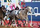 Lani Headed to KY After UAE Derby Win