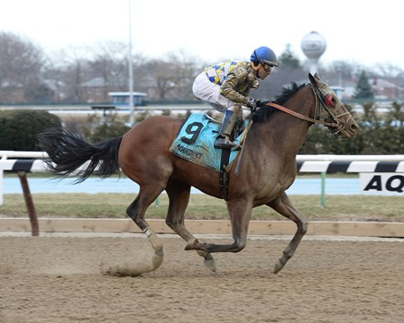 David Jacobson and Southern Equine Stable's Salutos Amigos completed a scintillating last-to-first rally to win the $200,000 Tom Fool Handicap (gr. III) for the second consecutive year at Aqueduct Racetrack.