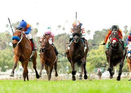 Budget Stable's Dressed in Hermes and jockey Mike Smith (left) leave the rest of the field behind in the $75,000 Pasadena Stakes at Santa Anita Park.