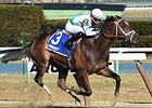 NY-Bred Awesome Gent Takes Winkfield