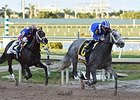 Mohaymen, Chrome Top First NTRA Polls