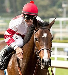 Songbird wins the 2016 Santa Ysabel Stakes.