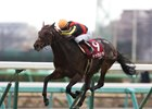 Duramente comes home strong to win the Nakayama Kinen (gr. II) at Nakayama Racecourse in Japan.