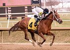 Sophia's Song, Abiding Star Shine at Laurel