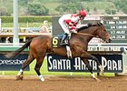 Songbird wins Santa Ysabel