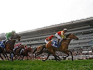 Designs On Rome wins the 2016 The Citi Hong Kong Gold Cup.