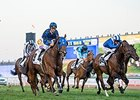 Brilliant Buffering Takes Al Quoz Sprint