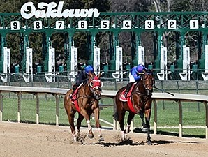 Discreetness - Oaklawn Park, March 4, 2016.