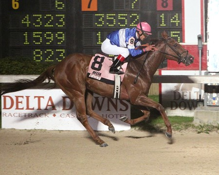 Icy Gentleman freezes the rest of the field in the Pelican Stakes at Delta Downs in Vinton, Louisiana.