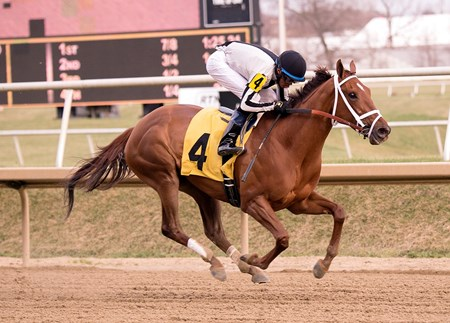 Sophia's Song captures the Caesar's Wish Stakes at Laurel Park.