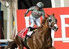 California Chrome Brilliant in World Cup Win